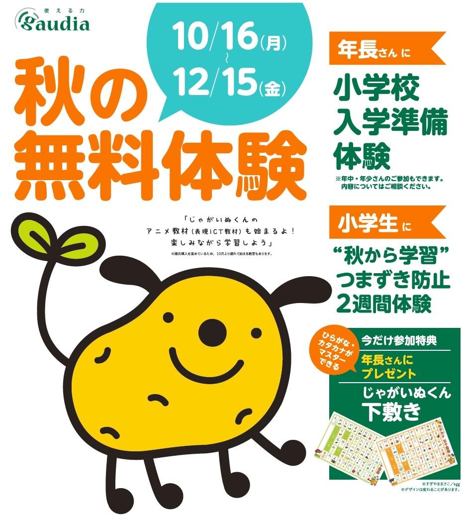 【ガウディア】小学生対象『秋の無料体験』実施中!!※12/15まで