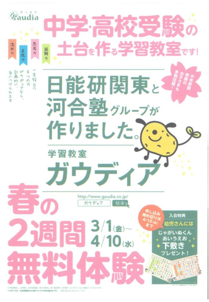 【ガウディア】春の無料体験受付中です!【4/10(水)まで】