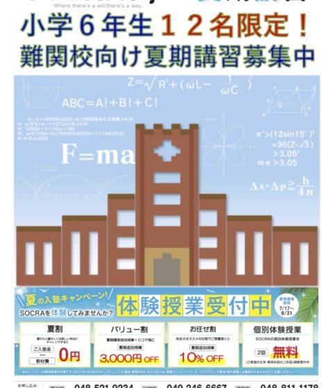 【小学6年生12名限定】難関校向け夏期講習授業、募集中!